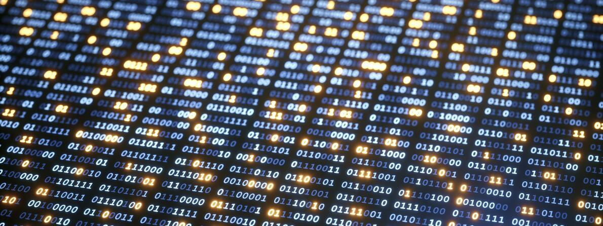Case study - Utilities IT Reneg